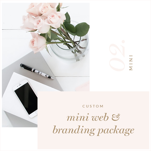 Mini Web & Branding Package